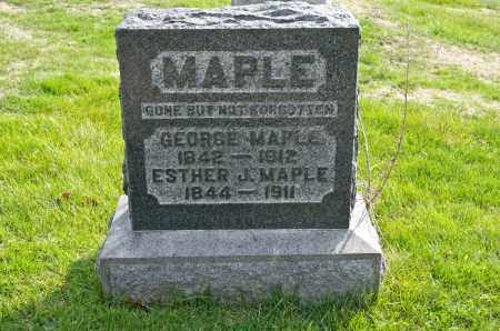 MAPLE, GEORGE - Carroll County, Ohio | GEORGE MAPLE - Ohio Gravestone Photos