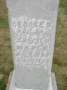 MAPLE, GEORGE - Carroll County, Ohio | GEORGE MAPLE - Ohio Gravestone Photos
