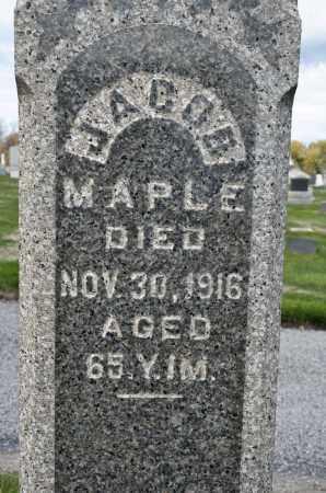 MAPLE, JACOB - Carroll County, Ohio | JACOB MAPLE - Ohio Gravestone Photos