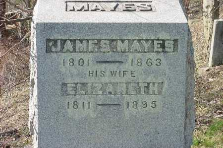 MAYES, JAMES - Carroll County, Ohio | JAMES MAYES - Ohio Gravestone Photos