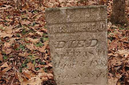 MOOREHEAD, THOMAS [VIEW 2] - Carroll County, Ohio   THOMAS [VIEW 2] MOOREHEAD - Ohio Gravestone Photos