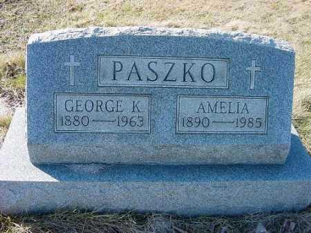 PASZKO, AMELIA - Carroll County, Ohio | AMELIA PASZKO - Ohio Gravestone Photos
