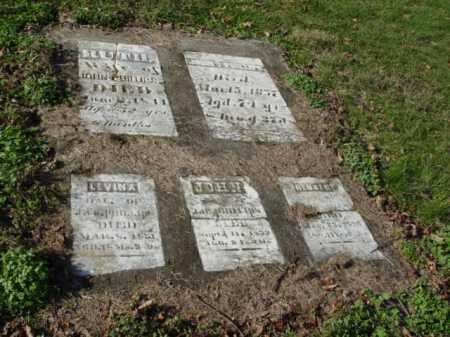 PHILLIPS, GROUP OF 5 STONE - Carroll County, Ohio | GROUP OF 5 STONE PHILLIPS - Ohio Gravestone Photos
