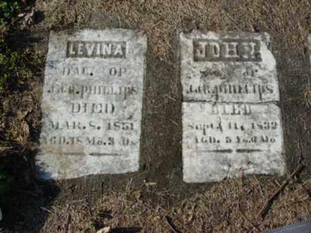 PHILLIPS, LEVINA - Carroll County, Ohio | LEVINA PHILLIPS - Ohio Gravestone Photos