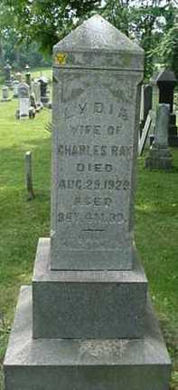 MARSHALL RAY, LYDIA - Carroll County, Ohio | LYDIA MARSHALL RAY - Ohio Gravestone Photos