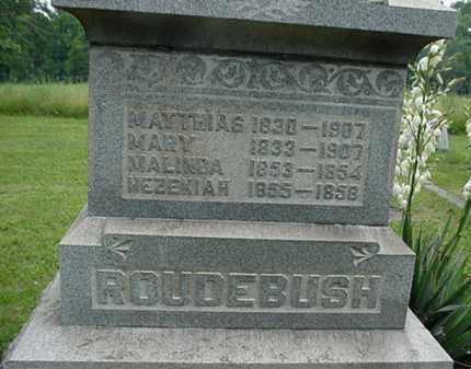 ROUDEBUSH, MARY - Carroll County, Ohio | MARY ROUDEBUSH - Ohio Gravestone Photos