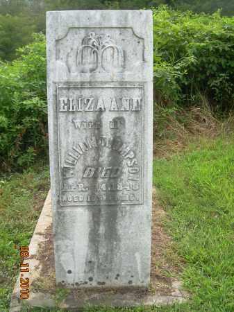 THOMPSON, ELIZA ANN - Carroll County, Ohio | ELIZA ANN THOMPSON - Ohio Gravestone Photos