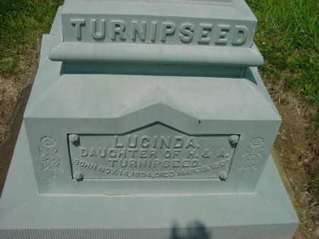 TURNIPSEED, LUCINDA - CLOSE VIEW - Carroll County, Ohio | LUCINDA - CLOSE VIEW TURNIPSEED - Ohio Gravestone Photos
