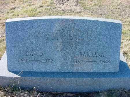 WARDLE, DAVID - Carroll County, Ohio | DAVID WARDLE - Ohio Gravestone Photos