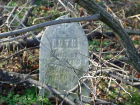 WEBB, RUTH - Carroll County, Ohio   RUTH WEBB - Ohio Gravestone Photos