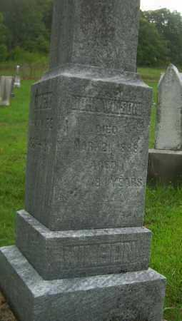 WILSON, JOHN - Carroll County, Ohio | JOHN WILSON - Ohio Gravestone Photos