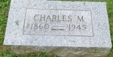 ABBOTT, CHARLES M - Champaign County, Ohio   CHARLES M ABBOTT - Ohio Gravestone Photos