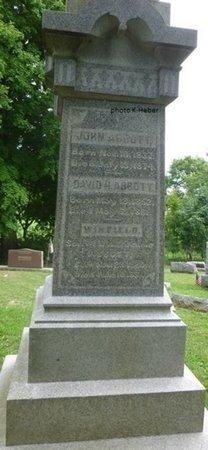 ABBOTT, DAVID H - Champaign County, Ohio | DAVID H ABBOTT - Ohio Gravestone Photos