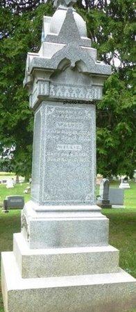 ABBOTT, WALTER - Champaign County, Ohio   WALTER ABBOTT - Ohio Gravestone Photos