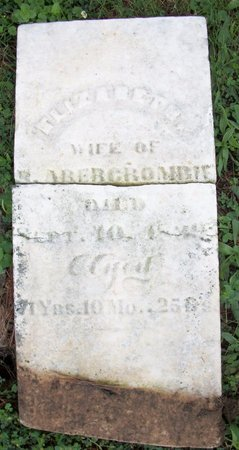 ABERCROMBIE, ELIZABETH - Champaign County, Ohio | ELIZABETH ABERCROMBIE - Ohio Gravestone Photos