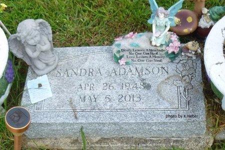 ADAMSON, SANDRA A - Champaign County, Ohio | SANDRA A ADAMSON - Ohio Gravestone Photos