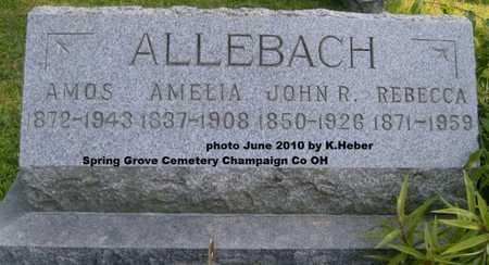ALLEBACH, REBECCA ANN - Champaign County, Ohio | REBECCA ANN ALLEBACH - Ohio Gravestone Photos