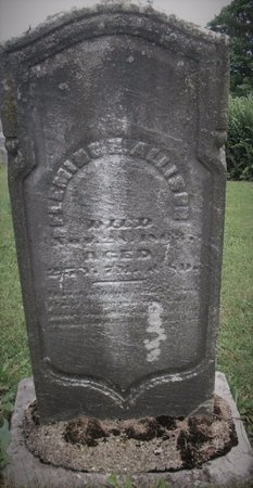 ALLISON, FLEMING - Champaign County, Ohio | FLEMING ALLISON - Ohio Gravestone Photos
