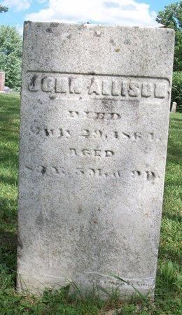 ALLISON, JOHN - Champaign County, Ohio   JOHN ALLISON - Ohio Gravestone Photos