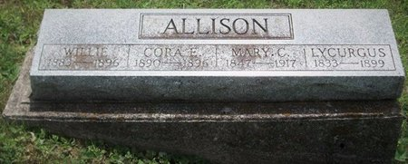 ALLISON, MARY CATHARINE - Champaign County, Ohio | MARY CATHARINE ALLISON - Ohio Gravestone Photos