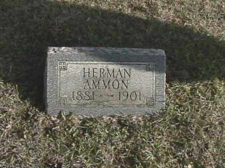 AMMON, HERMAN - Champaign County, Ohio | HERMAN AMMON - Ohio Gravestone Photos