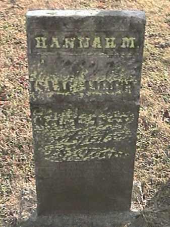LONG AMMON, HANNAH M. - Champaign County, Ohio | HANNAH M. LONG AMMON - Ohio Gravestone Photos
