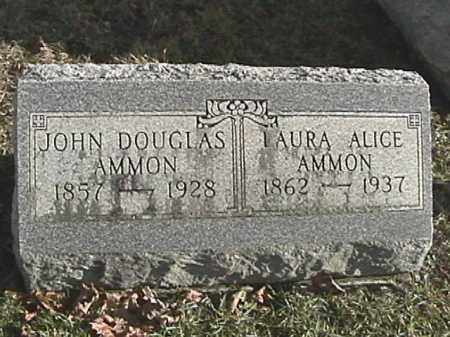 AMMON, LAURA ALICE - Champaign County, Ohio | LAURA ALICE AMMON - Ohio Gravestone Photos