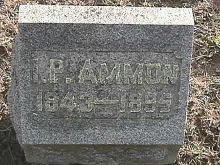 AMMON, JR., ISAAC PERRY - Champaign County, Ohio | ISAAC PERRY AMMON, JR. - Ohio Gravestone Photos