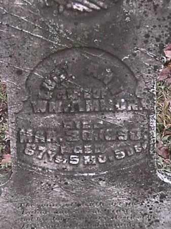 AMMON, LUCY ANN - Champaign County, Ohio | LUCY ANN AMMON - Ohio Gravestone Photos