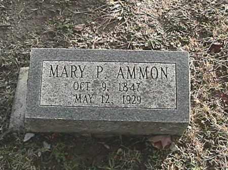 AMMON, MARY PHEOBE - Champaign County, Ohio | MARY PHEOBE AMMON - Ohio Gravestone Photos