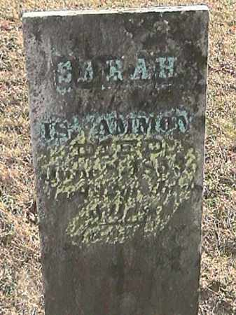 AMMON, SARAH - Champaign County, Ohio | SARAH AMMON - Ohio Gravestone Photos