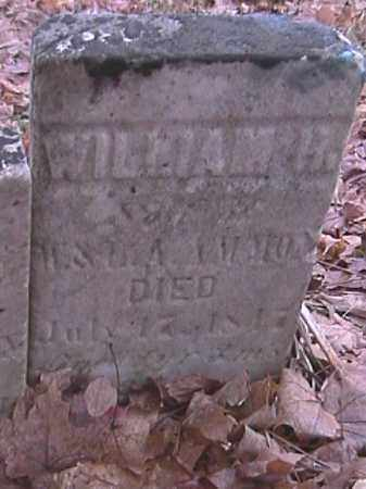 AMMON, WILLIAM H. - Champaign County, Ohio | WILLIAM H. AMMON - Ohio Gravestone Photos