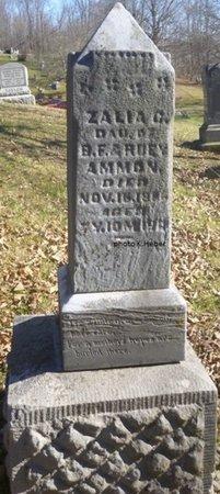 AMMON, ZALIA C - Champaign County, Ohio | ZALIA C AMMON - Ohio Gravestone Photos