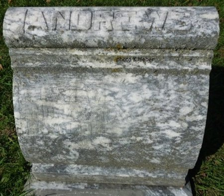 ANDREWS, LUCRETIA JANE - Champaign County, Ohio | LUCRETIA JANE ANDREWS - Ohio Gravestone Photos