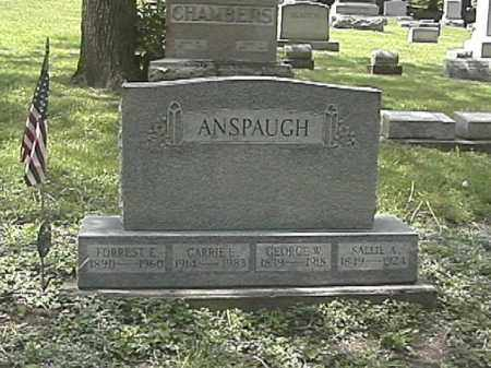 ANSPAUGH, CARRIE E. - Champaign County, Ohio | CARRIE E. ANSPAUGH - Ohio Gravestone Photos