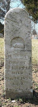 APPLE, AMANDA K - Champaign County, Ohio | AMANDA K APPLE - Ohio Gravestone Photos
