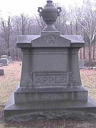 APPLE, PHOEBE JANE - Champaign County, Ohio | PHOEBE JANE APPLE - Ohio Gravestone Photos