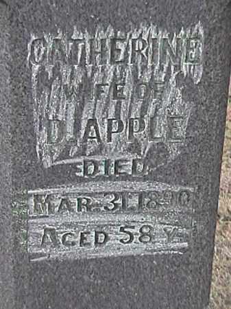 WATKINS APPLE, CATHERINE - Champaign County, Ohio | CATHERINE WATKINS APPLE - Ohio Gravestone Photos