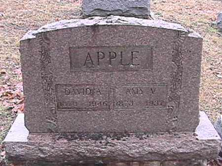 HAWES APPLE, AMY VIRGINIA - Champaign County, Ohio | AMY VIRGINIA HAWES APPLE - Ohio Gravestone Photos