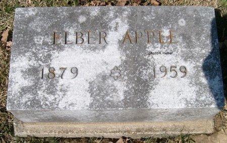 APPLE, ELBER IRA - Champaign County, Ohio | ELBER IRA APPLE - Ohio Gravestone Photos