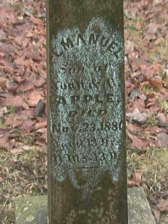 APPLE, EMANUEL - Champaign County, Ohio | EMANUEL APPLE - Ohio Gravestone Photos