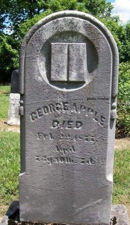 APPLE, GEORGE - Champaign County, Ohio   GEORGE APPLE - Ohio Gravestone Photos