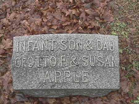 APPLE, INFANT SON - Champaign County, Ohio | INFANT SON APPLE - Ohio Gravestone Photos