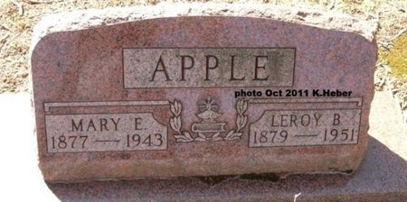 APPLE, MARY EDITH - Champaign County, Ohio | MARY EDITH APPLE - Ohio Gravestone Photos