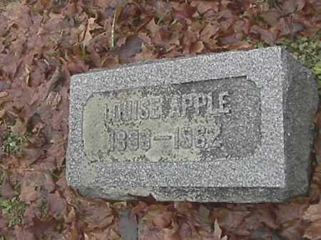 APPLE, LOUISE - Champaign County, Ohio | LOUISE APPLE - Ohio Gravestone Photos