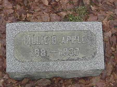 APPLE, LILLIE - Champaign County, Ohio | LILLIE APPLE - Ohio Gravestone Photos