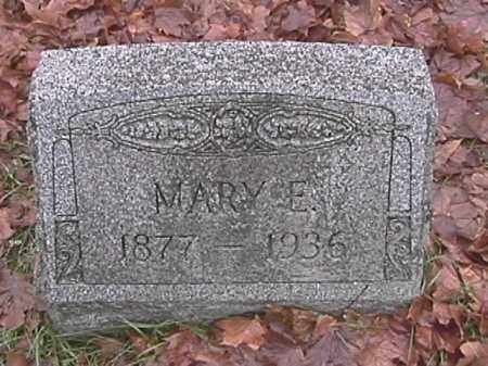 SHANK APPLE, MARY E. - Champaign County, Ohio | MARY E. SHANK APPLE - Ohio Gravestone Photos