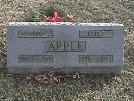 BURROUGHS APPLE, LOIS ELVA - Champaign County, Ohio | LOIS ELVA BURROUGHS APPLE - Ohio Gravestone Photos
