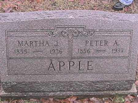 JENKINS APPLE, MARTHA J. - Champaign County, Ohio | MARTHA J. JENKINS APPLE - Ohio Gravestone Photos