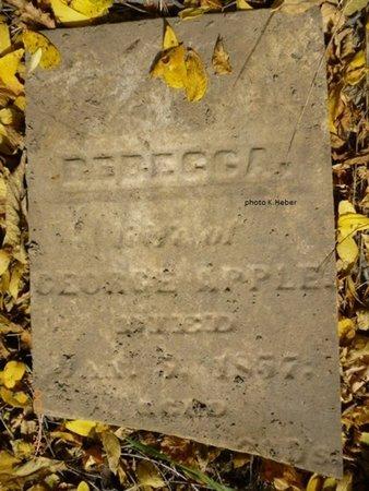 APPLE, REBECCA MARGARET - Champaign County, Ohio | REBECCA MARGARET APPLE - Ohio Gravestone Photos